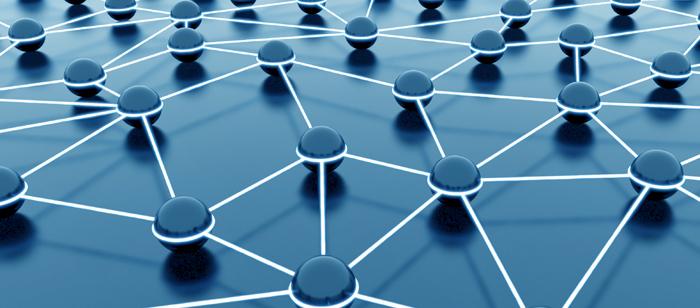 foto Network Portali